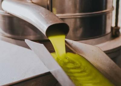 Extracción Aceite Verde